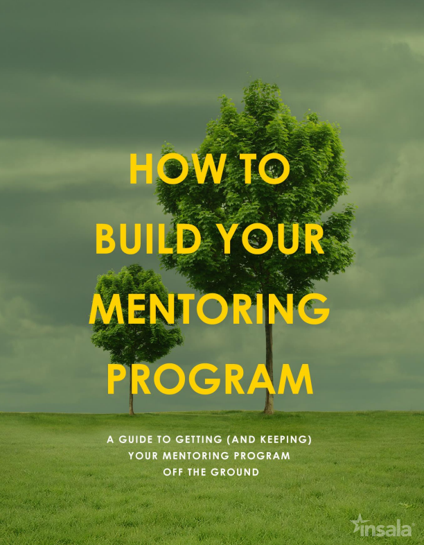 How_to_build_your_mentoring_program